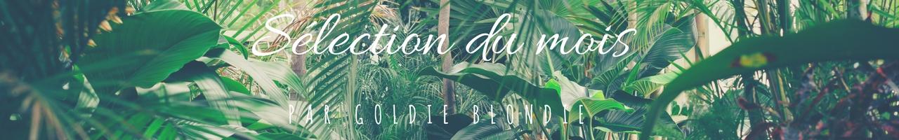 Sélection du mois Boo Bijoux par Goldie Blondie